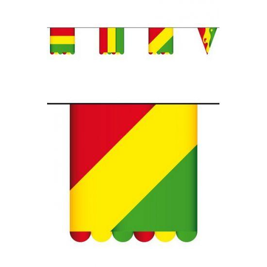 Vlaggenlijn Carnaval karton 3 meter. Kartonnen vlaggenlijn dubbelzijdig bedrukt met verschillende soorten vlaggetjes in de Carnaval kleuren rood, geel en groen. De vlaggetjes zijn ongeveer 16 x 13 cm groot. De vlaggenlijn is ongeveer 3 meter lang.