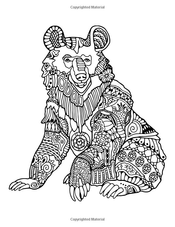 amazing spiez coloring pages | Awesome Animals Volume 3: A Stress Management Coloring ...