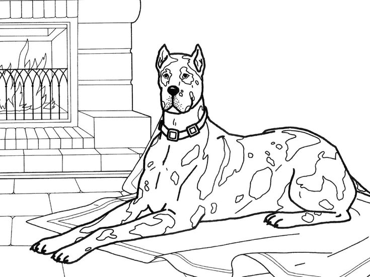 dog_coloring_pages_35 teenagers coloring pages - Colouring Papers