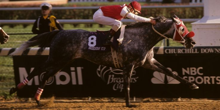108 Best Images About Triple Crown Horse Of The Year On
