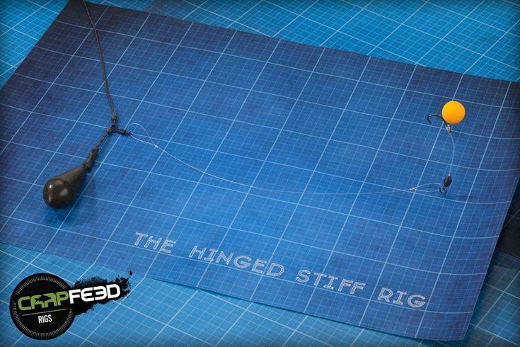 Hinged stiff rig — Carpfeed