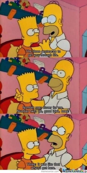 The 47 Best Things I Learnt Because Of The Simpsons Images On Pinterest |  Ha Ha, The Simpsons And Funny Stuff