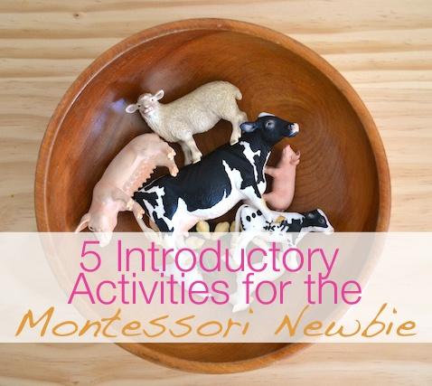 Make Like a Montessori Mama: Part 3 - Animal Activities