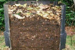 Les 25 meilleures id es de la cat gorie paillis sur pinterest - Faire du compost en appartement ...