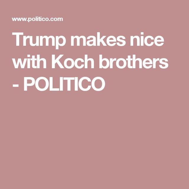 Trump Taxes On Solar: 17 Best Ideas About Koch Brothers On Pinterest