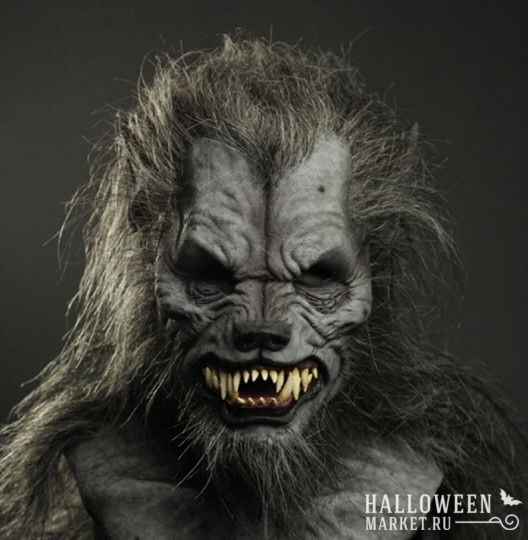 #werwolf #makeup #costume #halloweenmarket #halloween  #костюм #оборотень #образ Костюм оборотня на хэллоуин (фото)