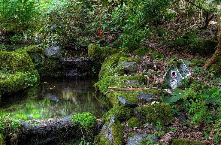 Milner Gardens and Woodland - Parksville/Qualicum Beach, Vancouver Island, BC, Canada   por Toad Hollow Photography