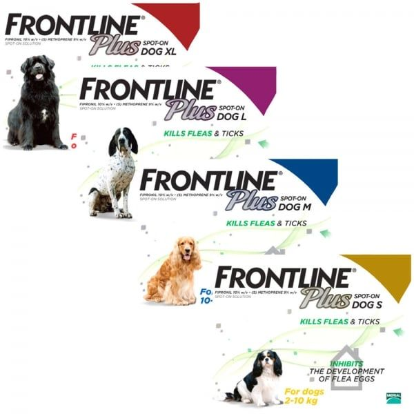 Frontline Plus For Dogs | Flea & Tick Spot On - Buy Online