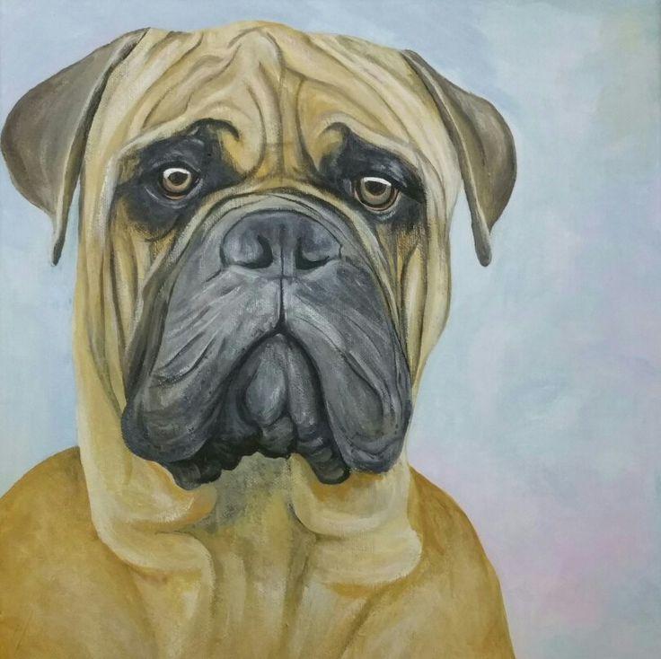 Bull mastiff 30x30cm Acrylic on canvas
