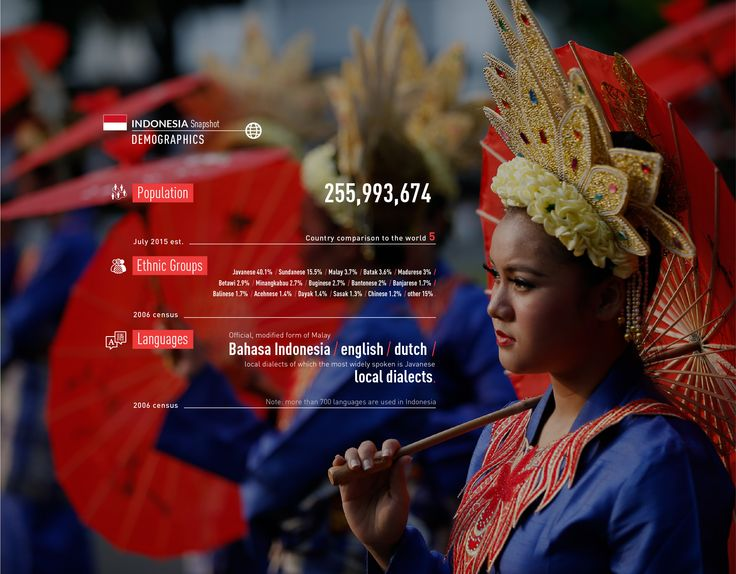 #Indonesia #snapshot #population #demographics #languages #oil #energy http://www.abo.net/it_IT/info_interattiva/indonesia-snapshot/indonesia-snapshot-eng.html