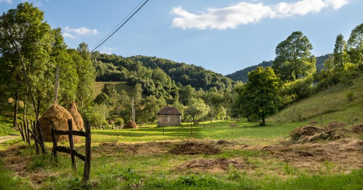 Dumești, Transylvania. The Raven's Nest is the perfect starting point of your Transylvanian adventure. #transylvania #rurallife #Romania #wildlife #authenticlife #rural