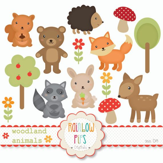 Woodland Forest Animals Digital Clipart Set by RainbowPips on Etsy, £3.26