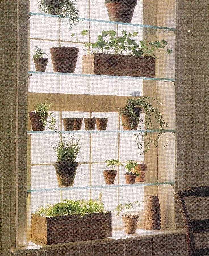 Hanging Window Herb Garden Part - 34: Indoor Window Garden From Http://roost-home.blogspot.com