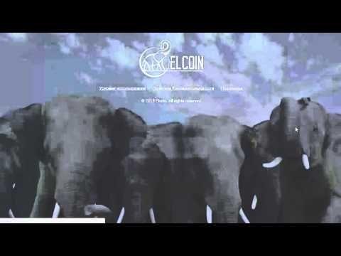 Elcoin Регистрация кошелька