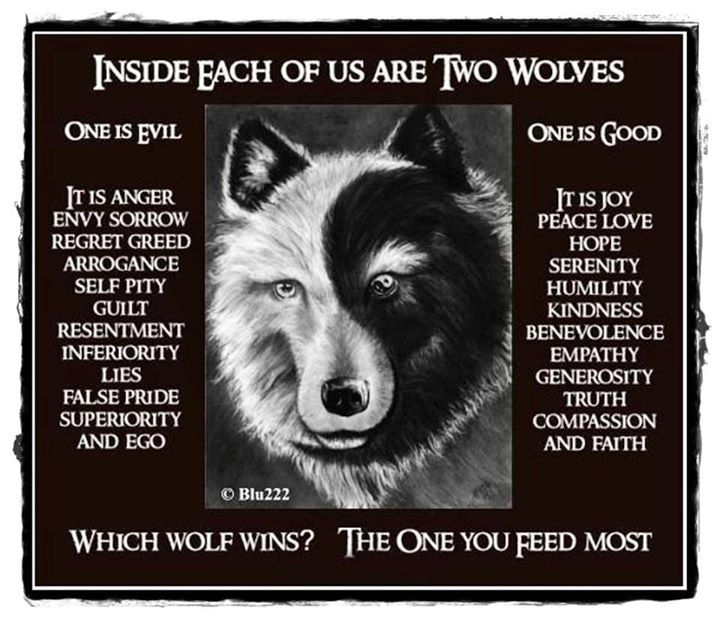 Feed The Wolf Love Quotes Quotesgram