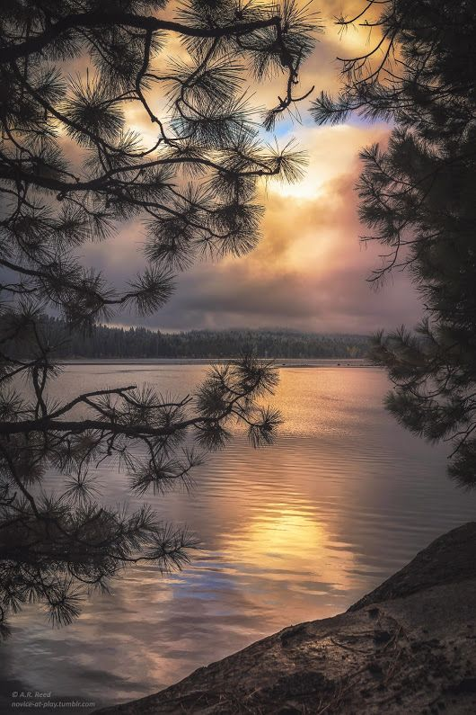 Beautiful view of nature  Photography by novice-at-play.