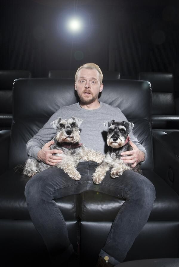 Simon Pegg stars in Hector and the Search for Happiness!  Starting this Friday January 16th! Tickets only $2.50 Each!    Starting this Friday January 16th: Interstellar, Hector and the Search for Happiness, Exodus: Gods and Kings, Penguins of Madagascar and Horrible Bosses 2!  Showtimes on mpcws.com