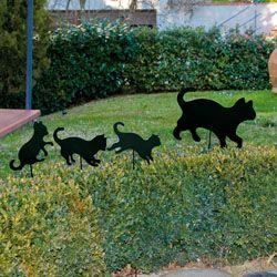 Uma simpática família de gatos… http://www.dmail.pt/prodotto.php?cod=289892