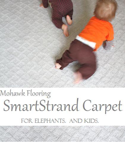 Mohawk Flooring SmartStrand carpet giveaway: http://mohawk-flooring.linqiad.com/click/YDFQaGVidHJk