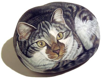 painted cat rock grey and white and brown