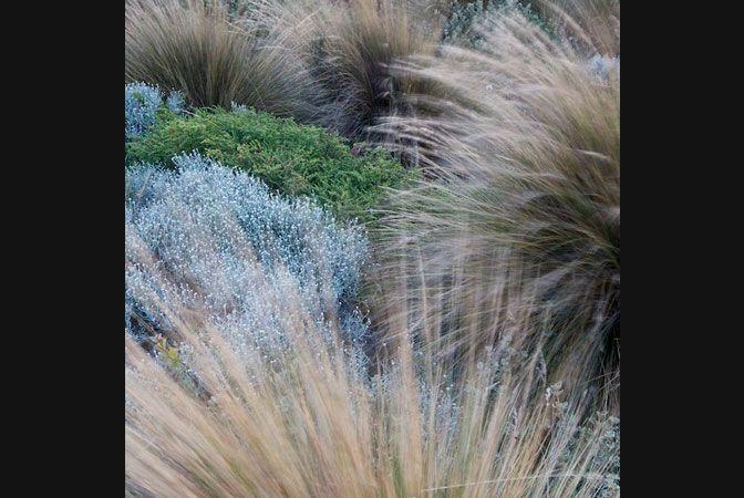 fb_landscapes_002