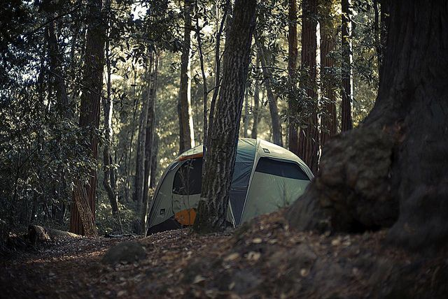 7. Camping:  Well camping doesn't mean accompanying a scout or a guide, its like having a tent in the woods or on the top of the hill, lighting fire woods in the night.