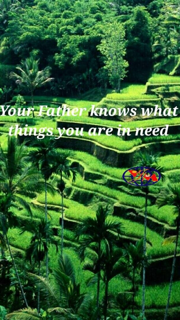 INSPIRATION: HE KNOWS BEFORE YOU ASK  Be not ye therefore like unto them: for your Father knoweth what things ye have need of, before ye ask him. (Matthew 6:8)  Every father knows what his baby needs. Its just milk. Many can afford and still some or so poor,  they cant afford. Some even forget the need and the child itself. Worldly Fathers sometimes dont know what a grown up child needs and whats the taste as thier is a  generational gap. But our Father knows what we need,....