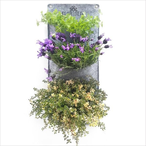 Grow herbs indoors with vertical plant pockets. Our planters are made watertight and weatherproof thus appropriate for vertical planting both indoors and outdoors. You can grow culinary herbs, ornamental greeneries and bloomers, even smaller fruits and veggies e.g bushy tomatoes, lettuce, hot peppers etc..