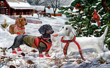 """New for 2016! Dachshund Christmas Holiday cards are 8 1/2"""" x 5 1/2"""" and come in packages of 12 cards. One design per package. All designs include envelopes, your personal message, and choice of greeting. Select the inside greeting of your choice from the menu below.Add your custom personal message to the Comments box during checkout."""