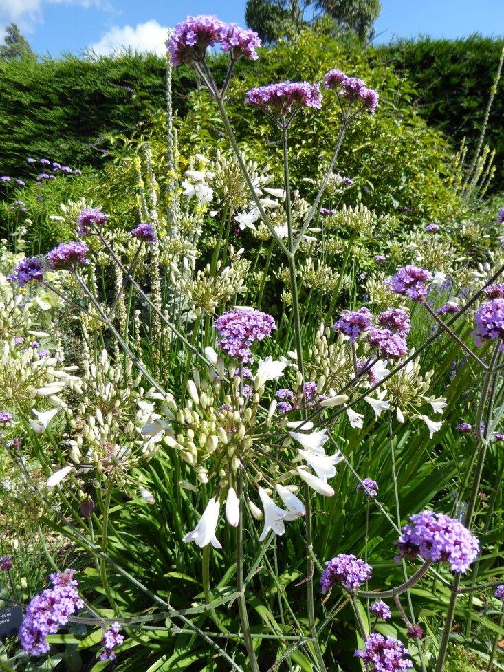 16 best Garden Design Tips images on Pinterest