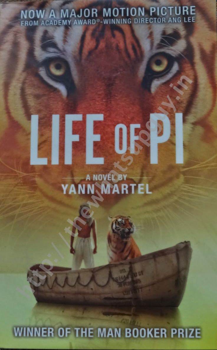 Yann Martel The Life of Pi Book Review Summary