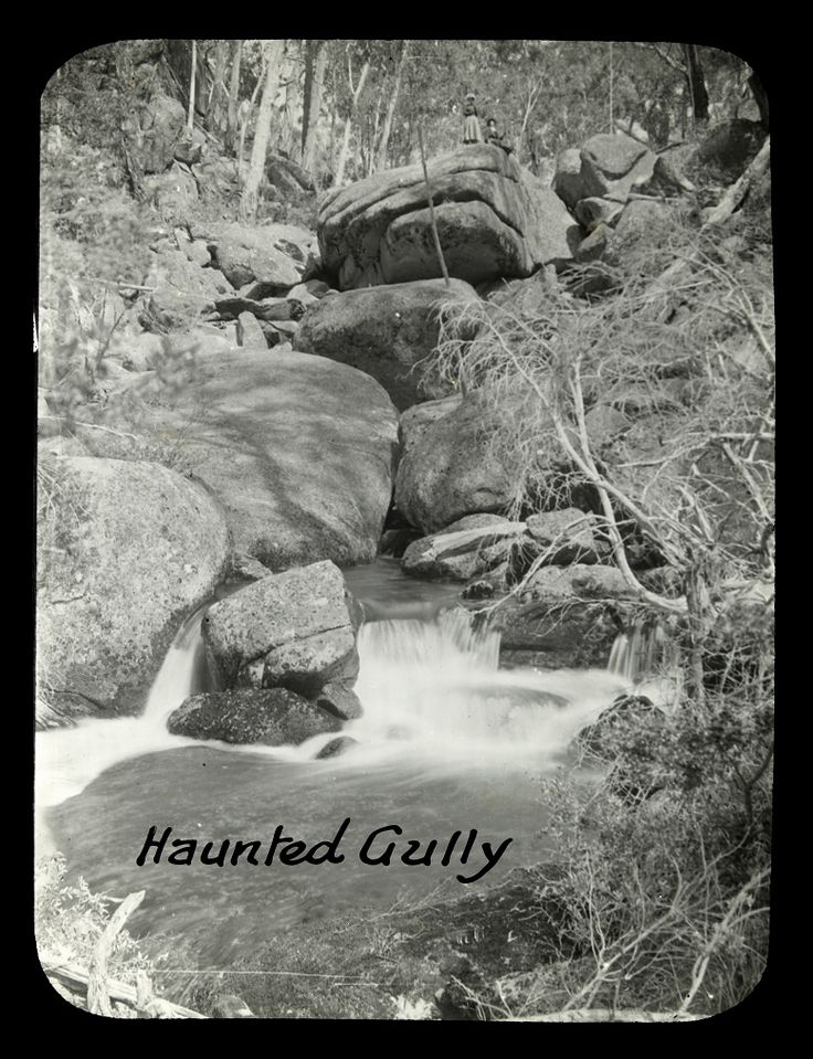 Haunted Gully. Photo by Alice Manfield. SLV collection