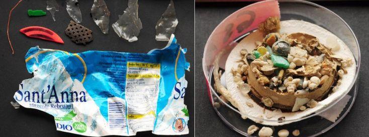 Gardasee: Plastikmüll verschmutzt Süßwasserseen