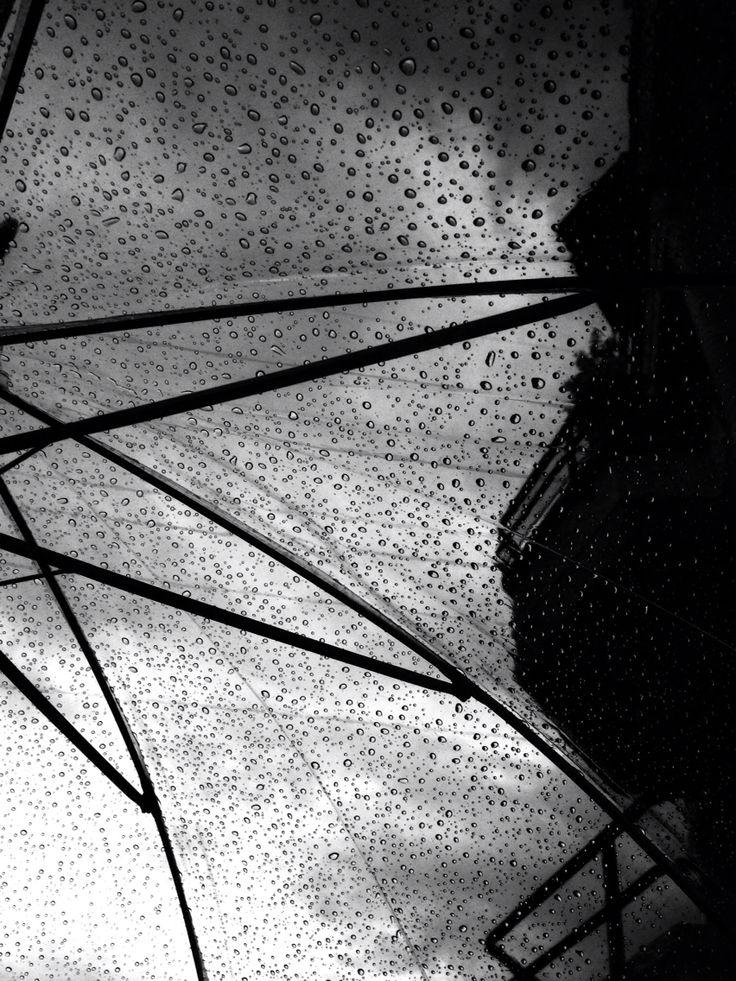 Paraguas ☔️