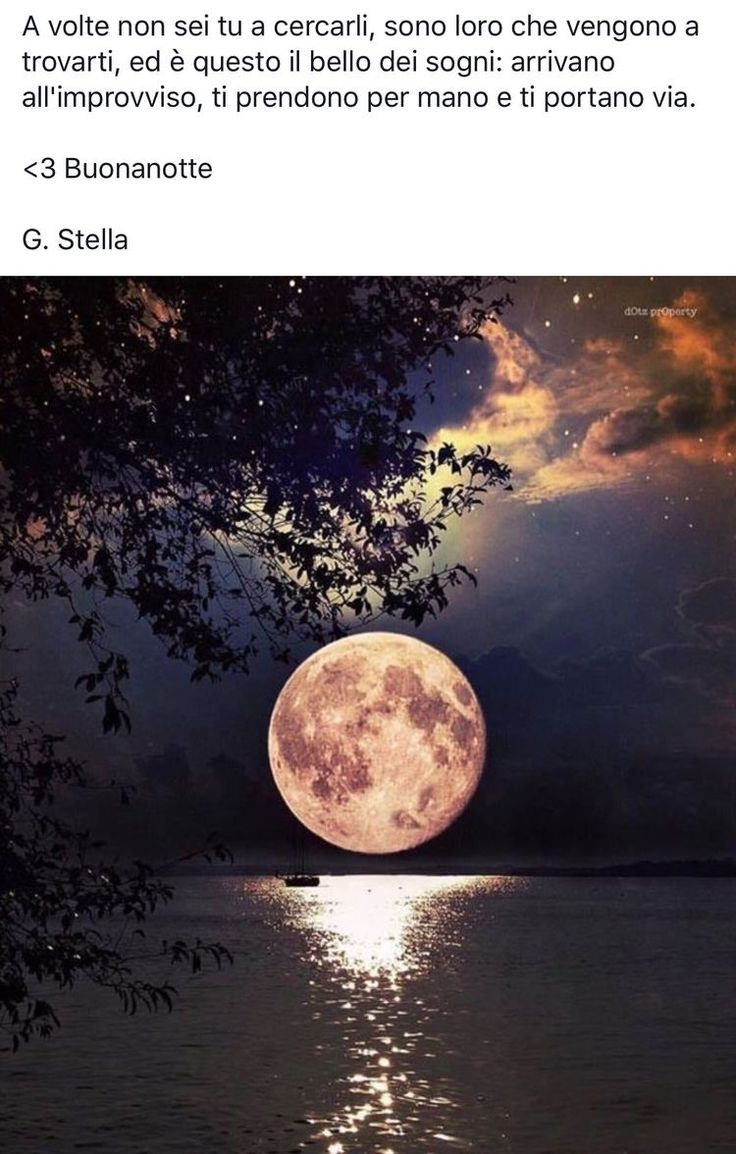 G. Stella