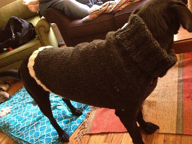 Large Dog Sweater Crochet Patterns Free