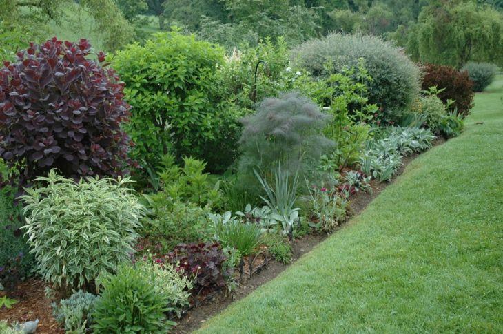 jardines arbustos con separdores verdes para el cesped
