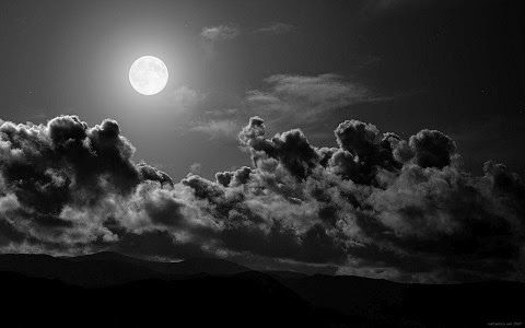 o-aetos-kai-to-geraki%C2%ABNikos-Lygeros-poihsh-Kai-Logoi Εργαζόμαστε τη νύχτα.... Για να φέρουμε το φως της ημέρας.