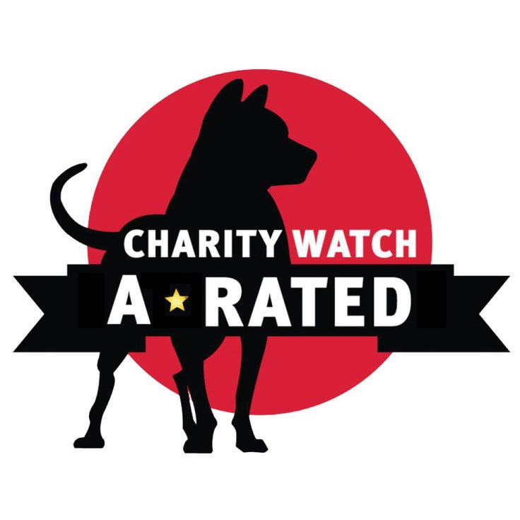 Charity Ratings | Fistula Foundation