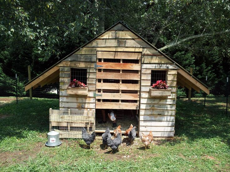 Chicken coop made from pallets pallet possibilities Chicken coop from pallet wood