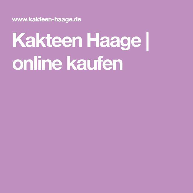 Kakteen Haage | online kaufen