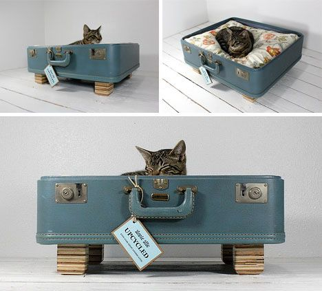 DIY Cat BedsDogs Beds, Cat Beds, Pets Beds, Vintage Suitcases, Old Suitcases, Cute Cat, Pet Beds, Cat Naps, Animal