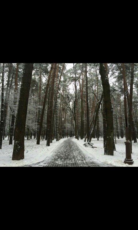 Dreams of snow!