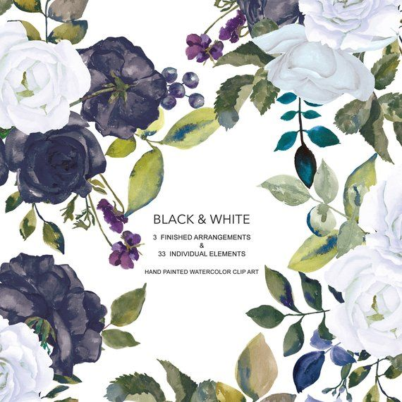 Black And White Flowers Graphics Floral Illustrations Floral
