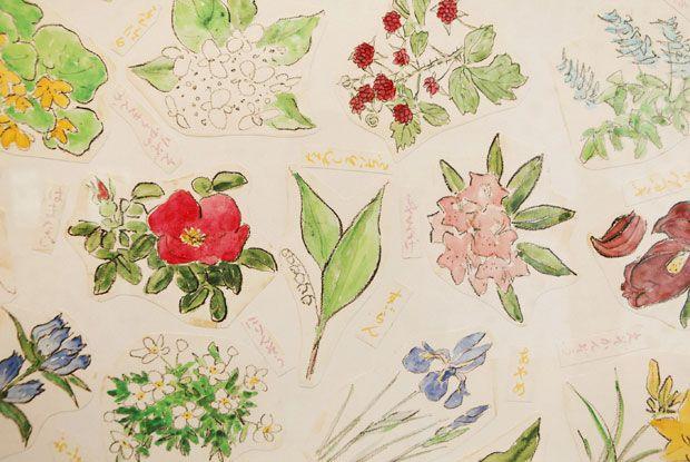 六花亭の包装紙の挿画を鑑賞。季節の草花と森に包まれた「花柄包装紙館(六花の森)」|おでかけコロカル 北海道・道東編|「colocal コロカル」ローカルを学ぶ・暮らす・旅する