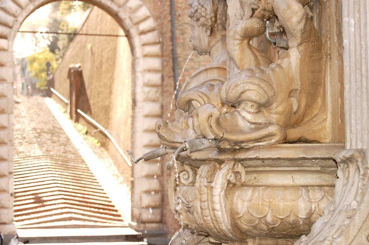 Cesena (FC), Fontana Masini