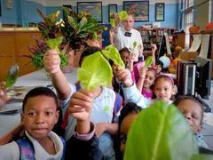 Πώς αυτός ο δάσκαλος ανέβασε κατακόρυφα την απόδοση των μαθητών του μετατρέποντας την τάξη σε μποστάνι! (ΦΩΤΟ-ΒΙΝΤΕΟ)
