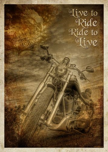 """Harley-Davidson motorcycles (popularly known as """"Harleys"""") have a distinctive…"""