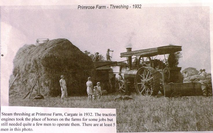 Primrose Farm lies at the Cargate end of Prince of Wales Road