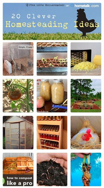20 clever homesteading ideas.